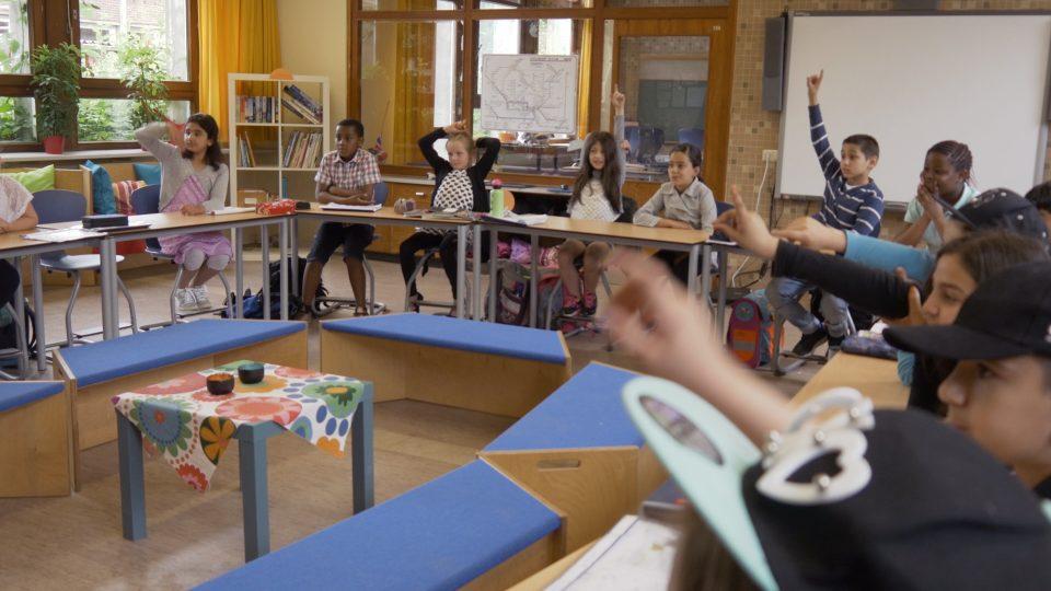 Schule in Hamburg verstehen